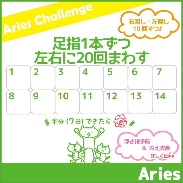 2月のアリーズチャレンジ!~足指1本ずつ左右に20回まわす~